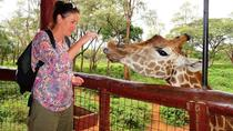 Nairobi Tour to David Sheldrick , Giraffe Centre & Soverior Shopping, Nairobi, Shopping Tours