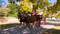 Colonial Williamsburg Admission, Washington DC, City Tours