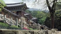 2-Day Silla Heritage Tour of Gyeongju from Seoul, Seoul