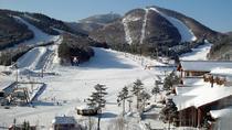 Best of the Ski Tour (JIsan Resort), Seoul, 4WD, ATV & Off-Road Tours