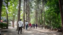 Strawberry Farm and Nami Island Day Trip from Seoul, Seoul, Multi-day Tours