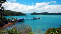 Shared Departure Transfer: Airlie Beach or Shute Harbour Hotels to Proserpine Airport, ...