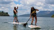 Rotorua Lakes Stand-Up Paddle (SUP) Scenic Tour, Rotorua, Stand Up Paddleboarding