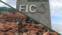 FICO & THE CITY, Bologna, Cultural Tours