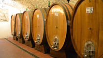 Full-Day Wine Tour from Bologna, Bologna
