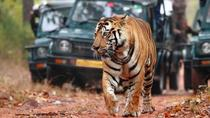 Private 07-Days Golden Triangle Tour with Ranthambhore Tiger Reserve from Delhi, New Delhi,...