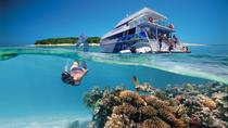 3-Day Southern Great Barrier Reef Tour Including Lady Musgrave Island, Brisbane, null