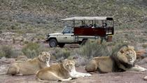 Aquila Game reserve, Full day with private transport, Cape Town, 4WD, ATV & Off-Road Tours