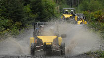 Alaskan Wilderness Off-Road Tour from Ketchikan, Ketchikan, Port Transfers