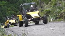 Ketchikan Shore Excursion: Off-Road Adventure Tour, ケチカン