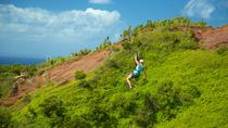 Kauai Zipline Tour in Poipu, Kauai, Private Sightseeing Tours