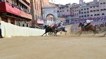 Siena Palio horse race: access to grandstands and terraces, Siena, Theater, Shows & Musicals