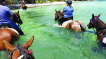 2-Hour Beach Horse Ride Experience on Waiheke Island, Waiheke Island, Horseback Riding