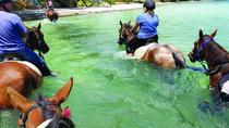 2-Hour Beach Horse Ride Experience on Waiheke Island, Waiheke Island, Horseback Riding