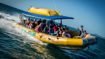 Excursão de rafting para a Praia de Whitehaven, The Whitsundays & Hamilton Island, Jet Boats & Speed Boats
