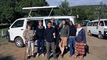 3 Days Masai Mara Safari, Nairobi, Private Sightseeing Tours