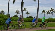North Shore Bike Tour, Oahu, Day Trips