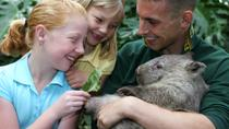 Featherdale Wildlife Park General Entry Ticket, New South Wales, Day Trips