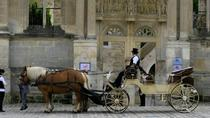 Tour privato: giro di Versailles in carrozza a cavalli, Versailles, Tour privati