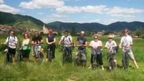 Wachau Valley Winery Small-Group Bike Tour from Vienna, Vienna, null
