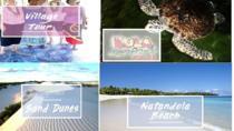Inland Village Tour - Kula Park - Sigatoka Sand Dunes - Natandola Beach, Nadi, Day Trips