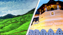 2 Day Tour to Kandy & Nuwara Eliya from Colombo, Colombo, Multi-day Tours