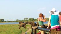 Day Excursions to Wasgamuwa National Park From Negombo, Negombo, Private Day Trips