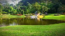 Half-Day Tour To Seethawaka Botanical Garden From Negombo, Negombo, Cultural Tours