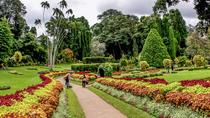 Kandy Day Tour from Colombo, Colombo, Cultural Tours