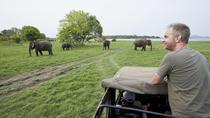 Minneriya safari From Sigiriya Hotels (Jeep Only), Sigiriya, 4WD, ATV & Off-Road Tours