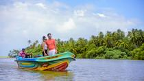 Negombo Transit Mangrove Boat Ride Tour From Airport, Negombo, Airport & Ground Transfers