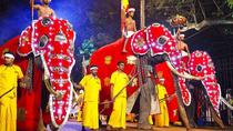 One Day Visit to Esala Perahera Kandy From Negombo, Negombo, Cultural Tours