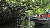 Shore Excursion Colombo Port Terminal To Mangrove Boat Ride Tour at Negombo, Negombo, Ports of Call ...