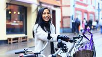 Gothenburg Private Bike Tour, Gothenburg, Bike & Mountain Bike Tours