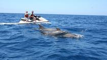 2 Hour Jet Ski Safari, Tenerife, Waterskiing & Jetskiing