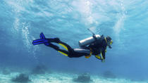 Small-Group Muscat Scuba Diving for Certified Divers, Muscat