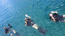Cours PADI Open Water Diver, Grand Case, Scuba Diving