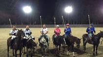 Polo Night - Polo Under the Stars, Buenos Aires, Half-day Tours