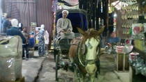 City tour by horse carriage, Luxor, Horse Carriage Rides
