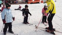 8.5-Hour Daemyung Vivaldi Park Ski Day Including Private 2-Hour Ski Lesson, Gangwon, Ski & Snow