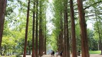 Full-Day Nami Island and Chuncheon Independent Tour from Seoul, Seoul, Day Trips
