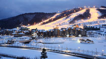 Shuttle Bus from Seoul to Yongpyong or Alpensia Resort in Pyeongchang, Seoul, Airport & Ground ...