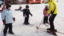 Skiing at Daemyung Vivaldi Park Including a Private 2-Hour Ski Lesson, Gangwon, Ski & Snow