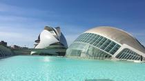 Day Trip to Valencia from Calpe or Altea, Alicante, null
