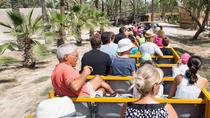 Rio Safari Elche with Transport from Benidorm, Benidorm, Day Trips