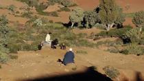 Excursion d'une journée dans la vallée de l'Ourika, déjeuner, randonnée et guide local, Marrakech, Day Trips