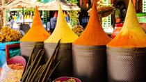 Visite guidée d'une journée complète de Marrakech, y compris les jardins, Marrakech, Cultural Tours