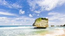Visite panoramique de la Barbade, incluant Bathsheba Sunbury Plantation, Barbados, Half-day Tours