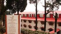Happy Valley tea tour, Darjeeling, India, Darjeeling, Coffee & Tea Tours