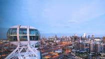 Melbourne Star Observation Wheel Private Experience, Melbourne, Helicopter Tours